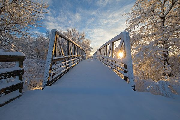 2020 Town of Parker Calendar Cover Photo - Snowy Bridge